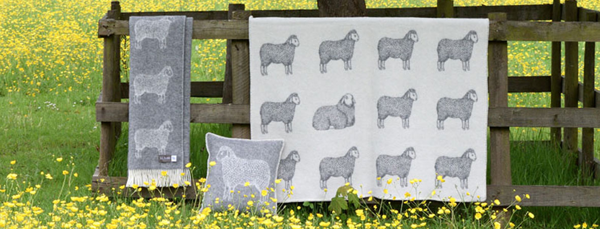 Sheep throw