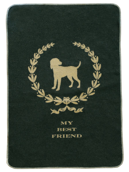 Best Friend Blanket
